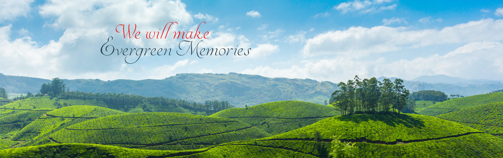 Affordable tour operator in Kerala